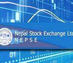 nepse exchange